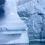 Iceberg and Fulmar