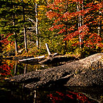 Fall Colors at McLeod Pond